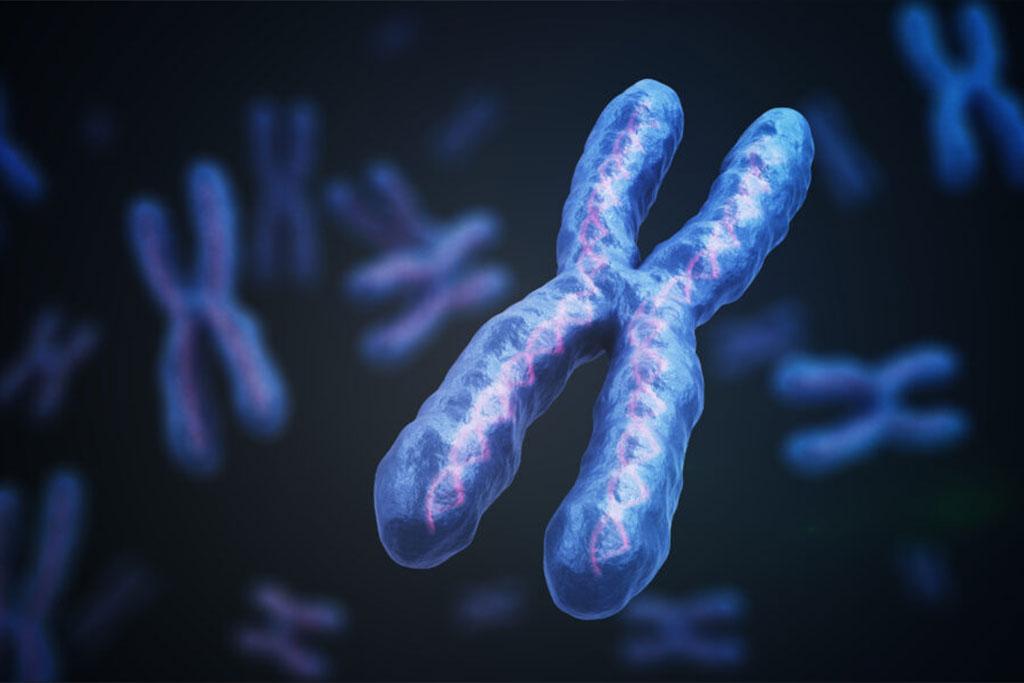 Cancer Genomic Testing in Lafayette CO